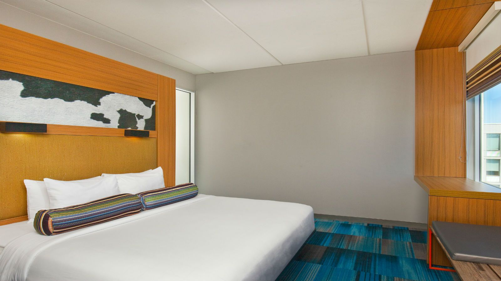 Bolingbrook Accommodations - Aloft King Room